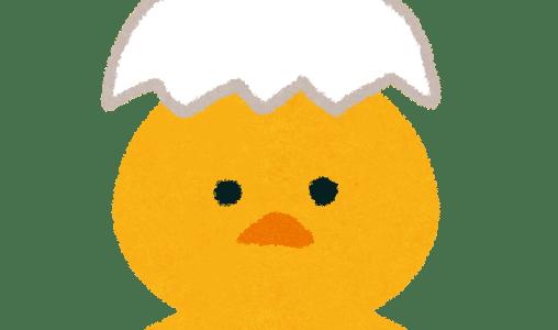 生卵とゆで卵の簡単過ぎる見分け方!見ただけでも一瞬で分かります!